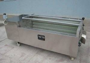 Ginger Cleaner/Peeler Machine for Sale