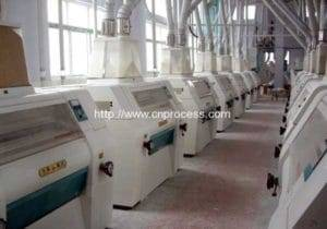 3T Per Hour Wheat Flour Production Plant