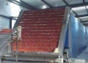 Multilayer-Belt-Type-Hot-Air-Drying-Machine