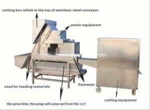 Onion-Peeling-&-Root-Cutter-Machine