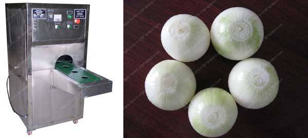 Onion-root-cutter-machine