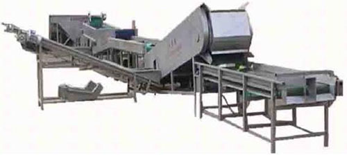 Potato Cleaning & Potato Grader production line