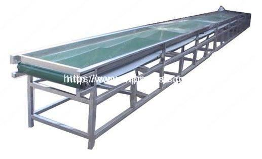 Selection Conveyor 4