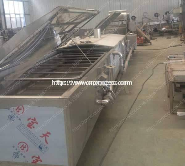 Fruit & Vegetable Steam Blanching Machine