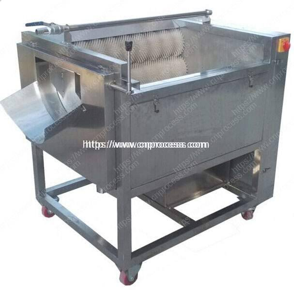 Small Potato Washing & Peeling Machine