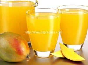 Mango-Orange-Fruit-Pulper-3